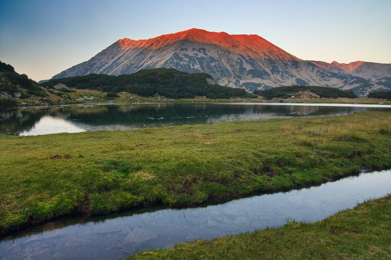 """Позиция на Коалиция """"Движение Да България"""" за Национален парк Пирин"""