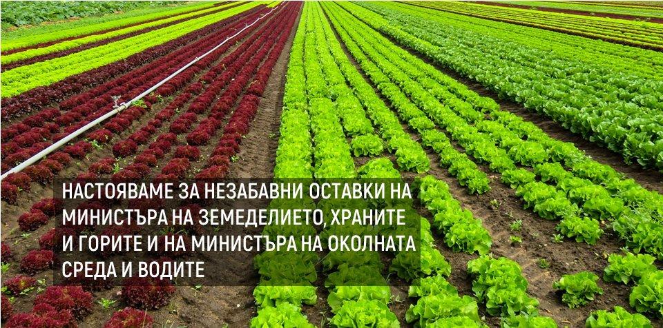 Настояваме за незабaвни оставки на министъра на земеделието, храните и горите и на министъра на околната среда и водите